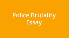 Create a strong police brutality essay